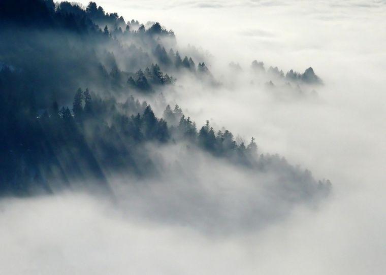 Vremea de marți, 17 noiembrie 2020, anunțul ANM: cod galben de ceață