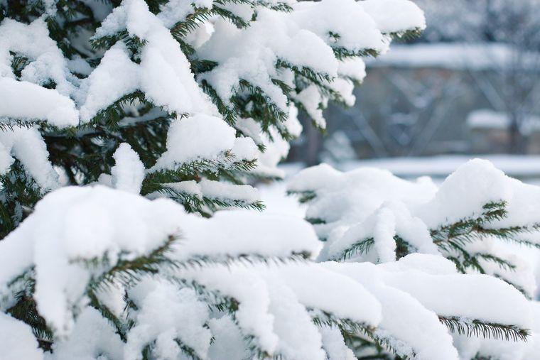 Vremea de weekend, 21-22 noiembrie 2020, anunțul ANM: cod galben de ninsori!