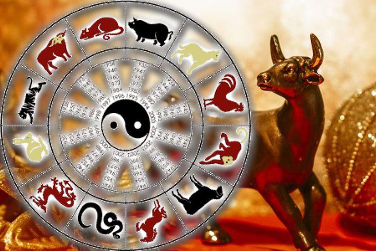 Anul Bivolului de Metal in horoscopul chinezesc: afla care sunt cele mai norocoase zodii in dragoste!