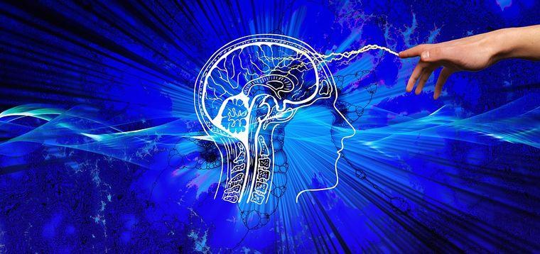 Creierul femeilor este mai activ decât al bărbaților