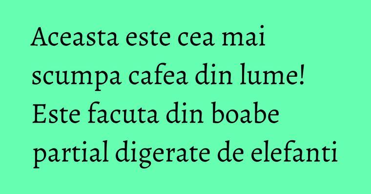 Aceasta este cea mai scumpa cafea din lume! Este facuta din boabe partial digerate de elefanti