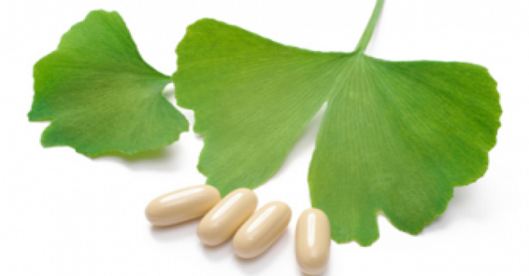 Ginkgo biloba – beneficii pentru sanatate