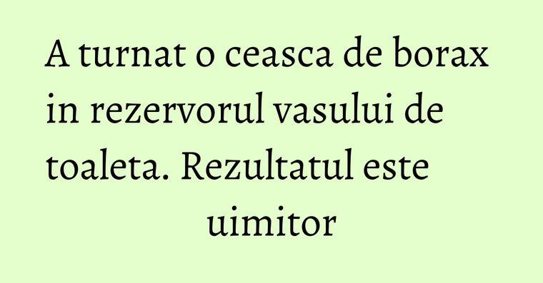 A turnat o ceasca de borax in rezervorul vasului de toaleta. Rezultatul este uimitor