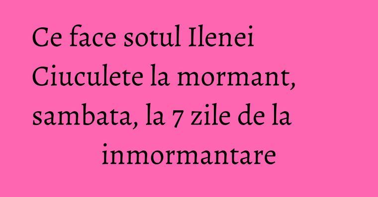 Ce face sotul Ilenei Ciuculete la mormant, sambata, la 7 zile de la inmormantare