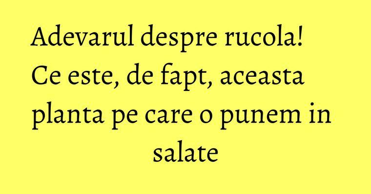Adevarul despre rucola! Ce este, de fapt, aceasta planta pe care o punem in salate