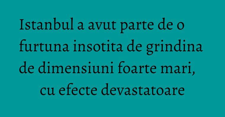 Istanbul a avut parte de o furtuna insotita de grindina de dimensiuni foarte mari, cu efecte devastatoare
