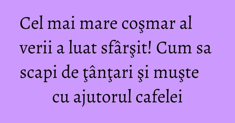 Cel mai mare coşmar al verii a luat sfârşit! Cum sa scapi de ţânţari şi muşte cu ajutorul cafelei