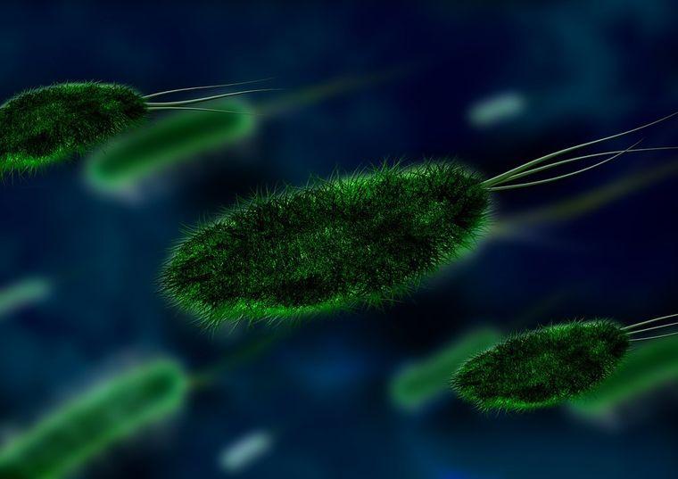 Cele mai intalnite boli care nu prezinta simptome