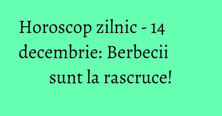 Horoscop zilnic - 14 decembrie: Berbecii sunt la rascruce!