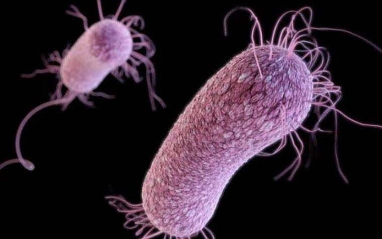 """Semnal de alarmă: """"Superbacteriile reprezintă o ameninţare la fel de mare precum schimbarea climatică sau războaiele"""""""