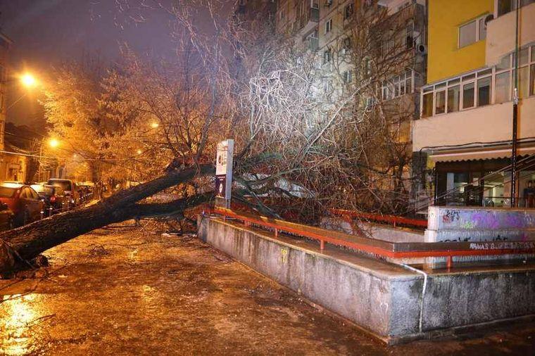 VREMEA. Fenomenele meteo fac în continuare ravagii. Peste 1.800 de cazuri gestionate de ISU București-Ilfov și 220 de maşini avariate
