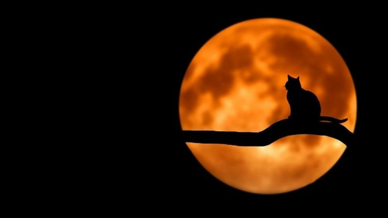 HOROSCOP. Zodiile și eclipsa de Lună Plină. PIERDERI irecuperabile!