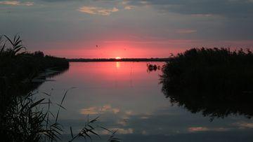 Obiective turistice în Delta Dunării - Ghid util pentru începători