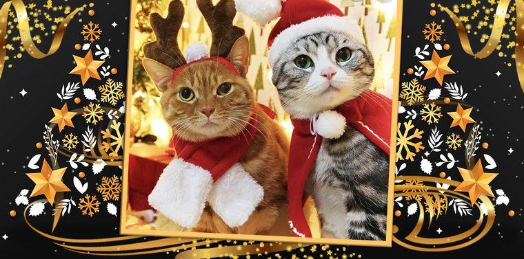 Cele mai calde urări de Crăciun, din partea echipei kfetele.ro