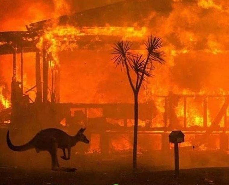 URGIE în Australia. Cartiere întregi, arse din temelie. Vedetele sar în ajutorul comunităților
