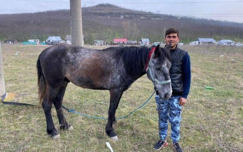 sergiu, tânărul din iași, a mers pe cal la maternitate, banii din donații, donații