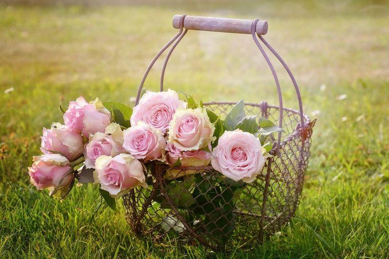 Mesaje de Florii. Cele mai frumoase mesaje și SMS-uri de Florii