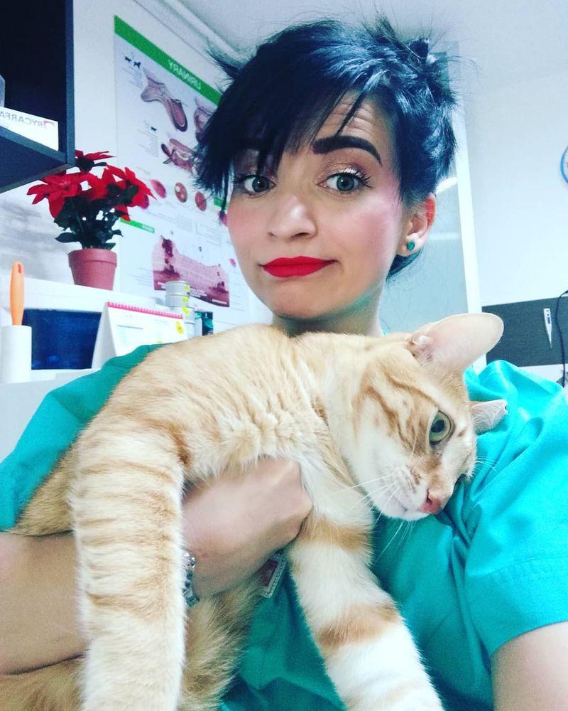 medic veterinar, andreea cîrlan, coronavirus animale, ingrijirea animalelor de companie,  exclusiv