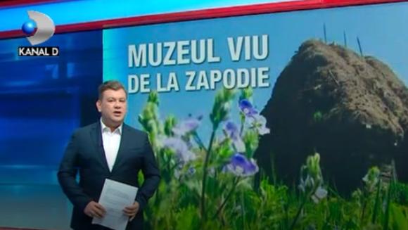 """Avem in Romania un loc, unic in lume! In case de pamant acoperite cu paie traieste dupa legi nescrise o mana de oameni! N-au nevoie de bani si singura sursa de trai le sunt animalele! Iata povestea """"muzeului viu"""" din catunul Zapodie - care nu exista nici"""