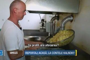 """A cunoscut succesul """"afara"""", dar dorul de tara l-a adus inapoi in Romania. Povestea artistului grafic care si-a lasat firma din strainatate pentru a face chips-uri de cartofi acasa"""