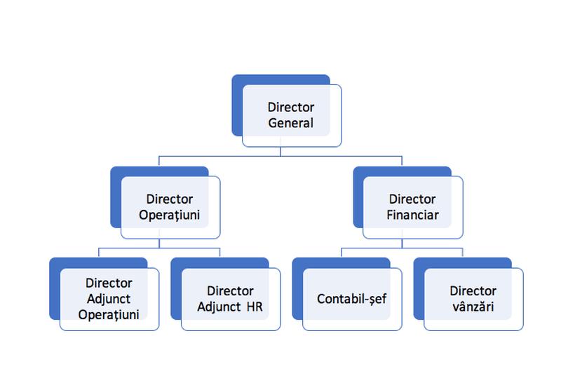 Ce este, de fapt, organigrama unei firme