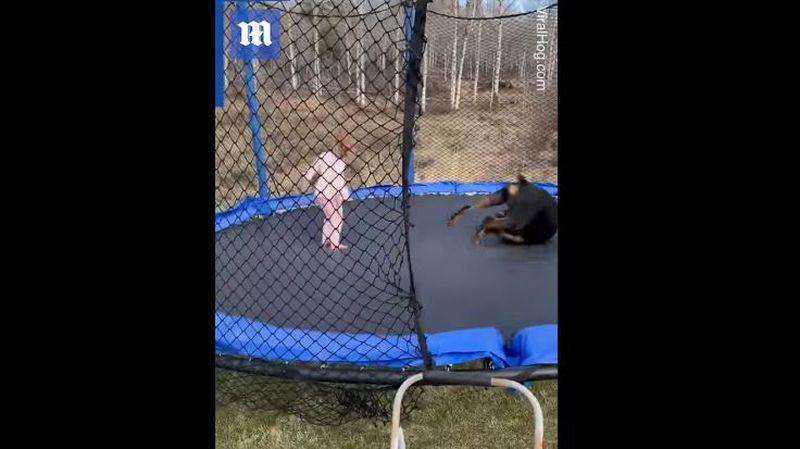 Te topeşti! Momentul în care o fetiţă şi câinele ei sar pe trambulină