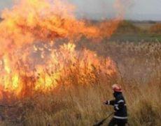 Pompierii din Argeș intervin pentru stingerea unui incendiu de vegetație uscată pe o suprafață de 70 de hectare