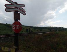 Traficul feroviar este oprit pe magistrala 400 din cauza unui copac căzut pe calea ferată