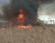 Incendiu în Brașov: 12 hectare de litieră de pădure au fost cuprinse de flăcări