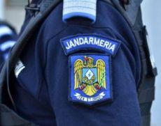 Jandarmii au intervenit pentru alungarea unui urs care a intrat în gospodăria unei femei