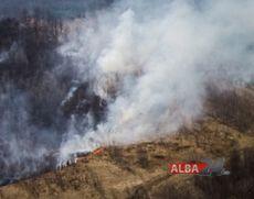 Pompierii din Alba intervin la un incendiu de pădure, în Munții Apuseni: Sunt afectate aproximativ trei hectare