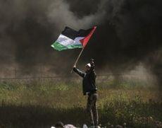 Trei militanți palestinieni, uciși de militarii israelieni la frontiera cu Fâșia Gaza