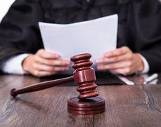 Tribunalul București PUNE LUPA pe martori în dosarul lui Vanghelie - Mandate de aducere și amenzi stabilite de instanță