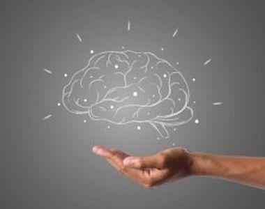 Vitamina esențială pentru creier și pentru metabolismul tuturor celulelor. Un nivel...