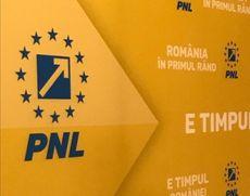 BUBUIE nervii în PNL după predicțiile lui Mihai Fifor: 'Manipulează cu tupeu opinia publică'